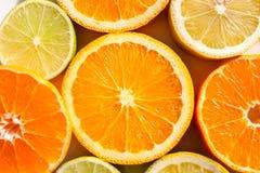Tranches d'oranges, de citrons, de chaux et de mandarines Photos libres de droits