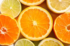 Tranches d'oranges, de citrons, de chaux et de mandarines Photographie stock libre de droits