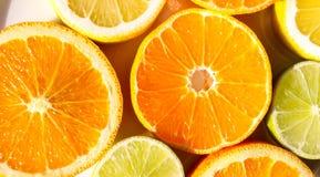 Tranches d'oranges, de citrons, de chaux et de mandarines Photo stock