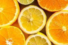 Tranches d'oranges, de citrons, de chaux et de mandarines Photographie stock