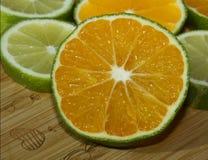 Tranches de chaux et de mandarine Photos libres de droits