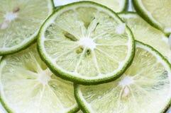 Tranches de citron Images libres de droits