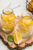 Tranches de citron et de chaux dans des pots Photos libres de droits