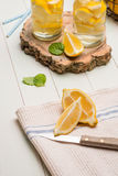 Tranches de citron et de chaux dans des pots Photographie stock libre de droits