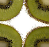 Tranches de kiwi Photo stock