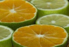 Tranches de mandarine et de chaux Photo libre de droits