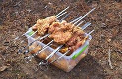 Tranches de porc embrochées sur brochettes sur le récipient avec la marinade Photographie stock libre de droits