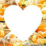 Tranches de préparation de mandarine Images libres de droits