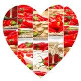 Tranches de préparation de poivre Photographie stock libre de droits