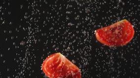 Tranches de tomate tombant dans l'eau sur le fond noir Légume frais dans l'eau avec des bulles Aliment biologique, sain banque de vidéos