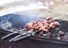 Tranches de viande Photos stock