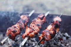Tranches de viande Photos libres de droits