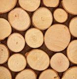 Tranches en bois Image libre de droits