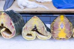 Tranches fraîches de thon sur la glace au marché 1 de produit alimentaire Photo libre de droits