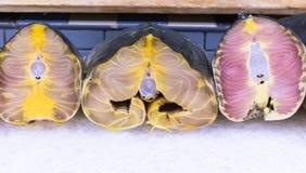 Tranches fraîches de thon sur la glace au marché 2 de produit alimentaire Photographie stock libre de droits