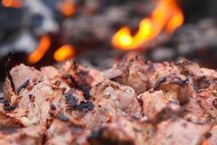 Tranches fraîches juteuses de viande Image libre de droits