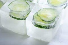 Tranches gelées de concombre dans les glaçons photos libres de droits