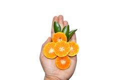 Tranches oranges en main sur le fond blanc Photo stock
