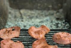 Tranches rôties de saucisse sur un gril, récréation extérieure, pique-nique Images libres de droits