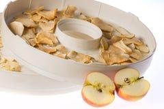 Tranches sèches de pomme dans le dessiccateur image stock