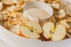 Tranches sèches de pomme dans le dessiccateur photo stock