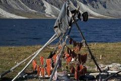 Tranches séchées au soleil de saumons photographie stock libre de droits