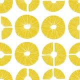Tranches sans couture d'ananas de modèle Ananas d'illustration de vecteur dans le vieux style d'encre Pour la bannière, menu de r Photo stock