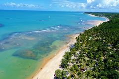 Trancoso, Bahía, el Brasil: Vista de la playa hermosa con la plantación cristalina del árbol del agua y de coco imagen de archivo