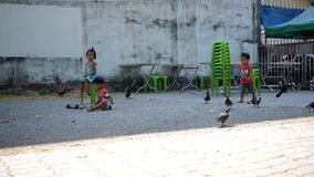 Trang,Thailand - March 3 : Children enjoy playing together on courtyard in shade area background in holiday stock footage