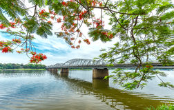 Trang Tien Bridge som hägrar flamboyanta sidofilialer som reflekterar på floden royaltyfria bilder