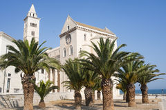 Trani (Apulia) - Medieval cathedral. Trani (Puglia, Italy) - Medieval cathedral and palm trees stock images