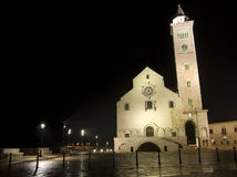 Trani by night- cathedral. Front of cathedral by night in Trani, Apulia, Italy Stock Images