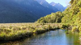 Tranquil alpine scenery. Tranquil scenery with flowing river and mountains stock video