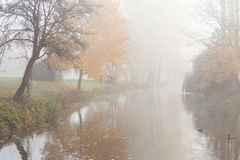 Tranquil autumn landscape - lake and trees Royalty Free Stock Photo