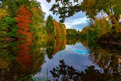 Peaceful calm autumn pond with colorful reflection. Tranquil autumn pond with reflections of surrounding trees with colorful foliage viewed past a tree branch royalty free stock photography
