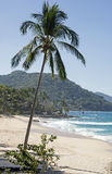 Tranquil beach in the Banderas Bay Stock Photography