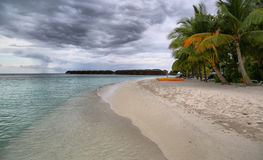 Tranquil beach with beautiful vegetation Royalty Free Stock Photo