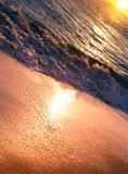 Tranquil beach sunrise. Sea waves, foam and golden sand. Copyspace background Royalty Free Stock Image
