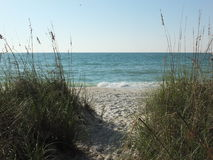 Tranquil Beach. Waves break on the while sand in south Florida Stock Image