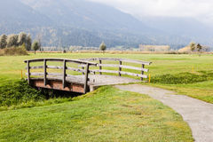 Tranquil countryside Stock Images