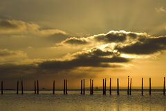 Tranquil dawn. Sunrise over the solent off Penington Marshes, near Lymington, England Royalty Free Stock Image