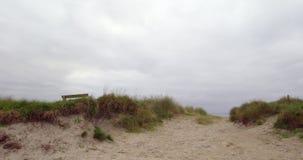 Tranquil deserted beach scene stock video