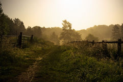 Tranquil English footpath Royalty Free Stock Photos
