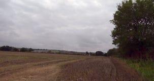 Tranquil farm field stock footage