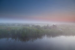 Tranquil foggy morning in Dutch farmland Stock Photography