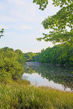 Tranquil Frankfort Maine River Scene Royalty Free Stock Images