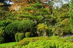 Tranquil garden landscape Stock Images