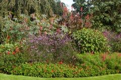 Tranquil garden landscape Stock Image