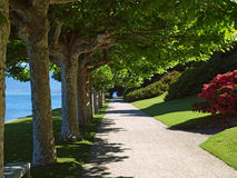 Tranquil garden path Stock Image