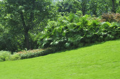 Tranquil garden Stock Photography